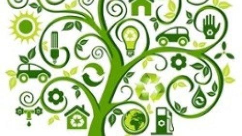 going-green-tree-wellness-sustainability