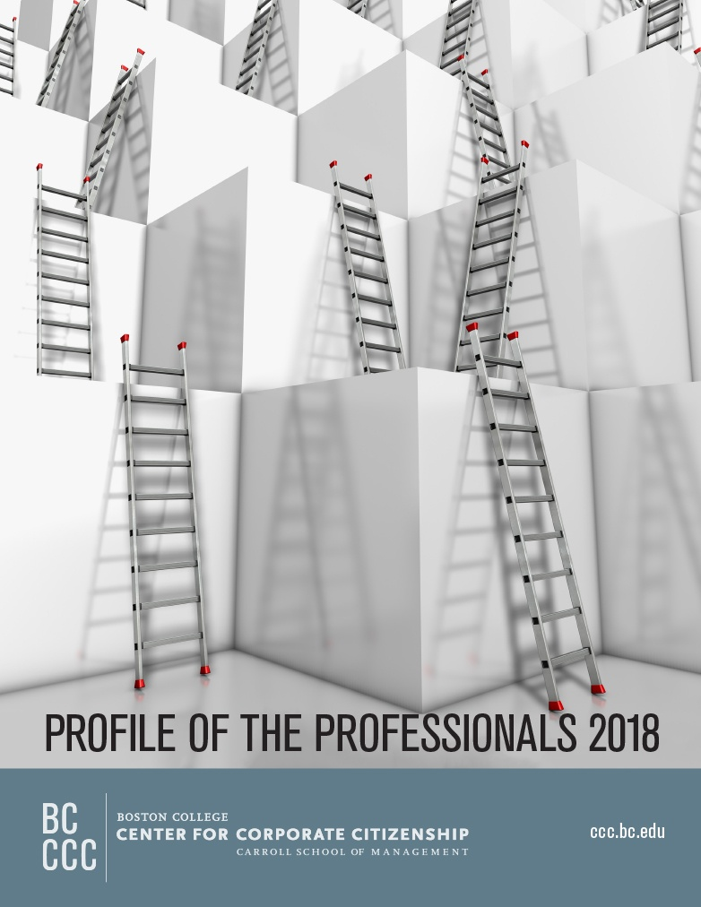 New Research: Profile of the Professionals 2018